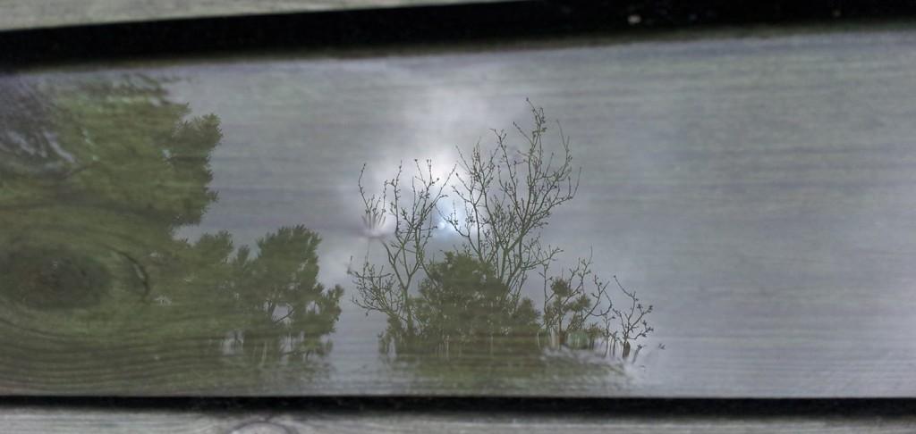rainreflect